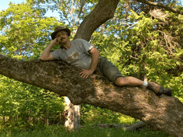 TCWoodcrafters-Background_Tim-in-a-Tree